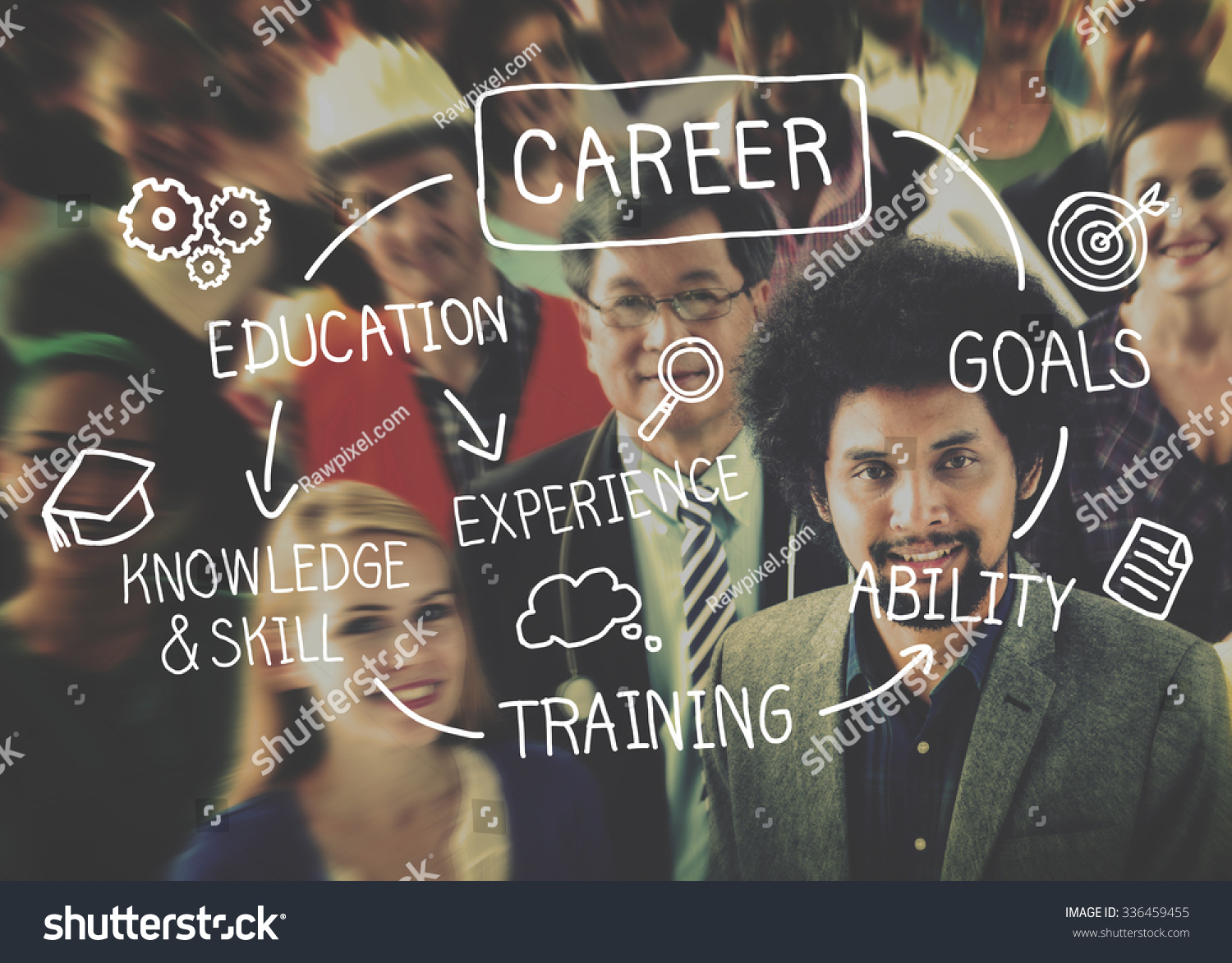 career in the field of software development